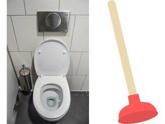 debouche wc